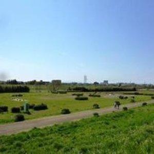 パルミナード尾山台壱番館の近くの公園・緑地