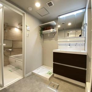 ブロードウェイ(5階,4699万円)の化粧室・脱衣所・洗面室
