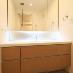 目白プレイスタワー(3階,7180万円)の化粧室・脱衣所・洗面室