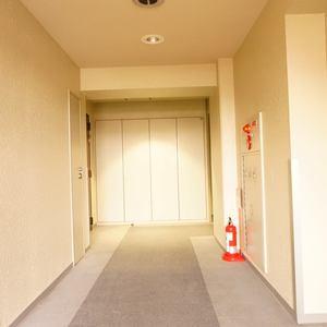 スカイシティ南砂(8階,)のフロア廊下(エレベーター降りてからお部屋まで)