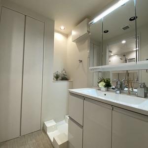 両国スカイハイツ(2階,4280万円)の化粧室・脱衣所・洗面室
