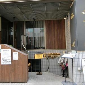 ライオンズマンション新富町第2の最寄りの駅周辺・街の様子