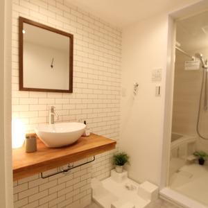 ライオンズマンション新富町第2(5階,5780万円)の化粧室・脱衣所・洗面室