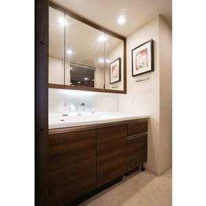プラウドシティ大田六郷フォレスト街区(3階,5480万円)の化粧室・脱衣所・洗面室