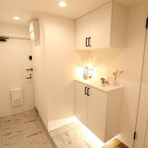 ライオンズマンション新富町第2(5階,5280万円)のお部屋の玄関