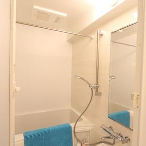 ライオンズマンション新富町第2(5階,5280万円)の浴室・お風呂