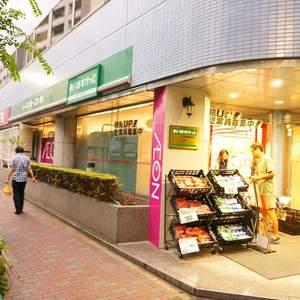日商岩井日本橋浜町マンションの周辺の食品スーパー、コンビニなどのお買い物