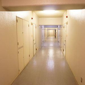 日商岩井日本橋浜町マンション(5階,)のフロア廊下(エレベーター降りてからお部屋まで)