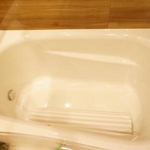 日商岩井日本橋浜町マンション(5階,)の浴室・お風呂