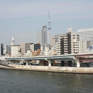 VIP日本橋浜町(8階,)のお部屋からの眺望