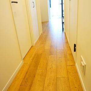信濃町ハイム(4階,)のお部屋の廊下