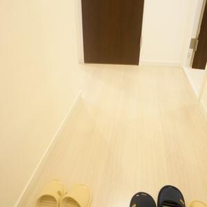 ルモン広尾(8階,)のお部屋の廊下