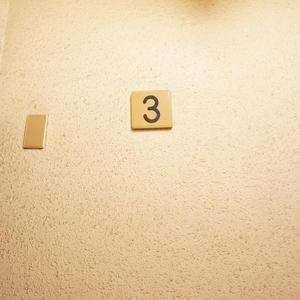 ネオハイツ田町(3階,4390万円)のフロア廊下