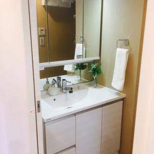 藤和シティホームズ島津山西(7階,)の化粧室・脱衣所・洗面室