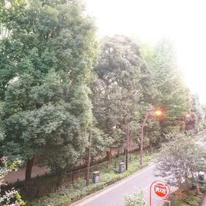 YKB御苑(3階,)のお部屋からの眺望