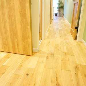 藤和高輪台コープ(4階,3990万円)のお部屋の廊下