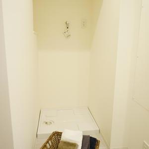 藤和高輪台コープ(4階,3990万円)の化粧室・脱衣所・洗面室