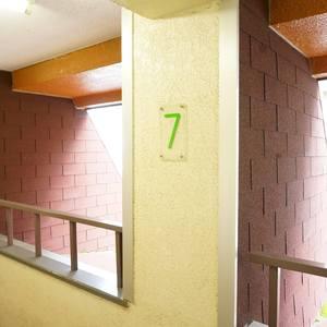 グローリー日本橋(7階,)のフロア廊下(エレベーター降りてからお部屋まで)