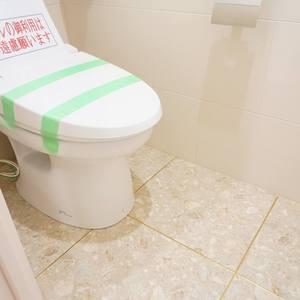 ディオレ西新宿(12階,6980万円)のトイレ