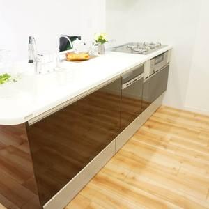 ディオレ西新宿(12階,6980万円)のキッチン