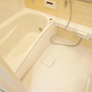 中銀高輪マンシオン(13階,2880万円)の浴室・お風呂