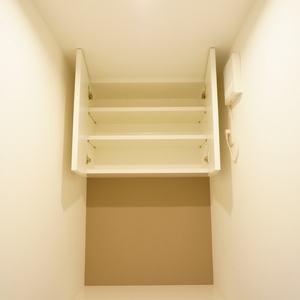 中銀高輪マンシオン(13階,)のトイレ