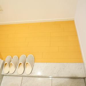 小石川ザレジデンスイーストスクエア(2階,)のお部屋の廊下