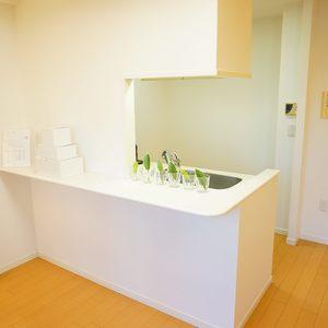 小石川ザレジデンスイーストスクエア(2階,)のキッチン