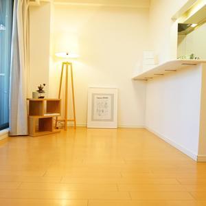 小石川ザレジデンスイーストスクエア(2階,)のリビング・ダイニング