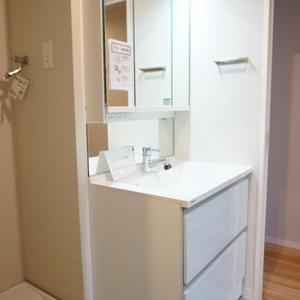 ファミネス小石川(4階,)の化粧室・脱衣所・洗面室