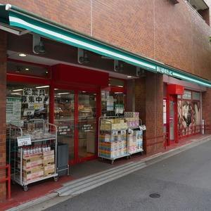 飯田橋第一パークファミリアの周辺の食品スーパー、コンビニなどのお買い物
