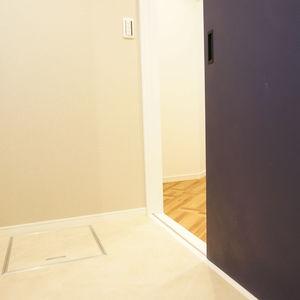 東急ドエルアルス石川台B棟(4階,2790万円)の化粧室・脱衣所・洗面室