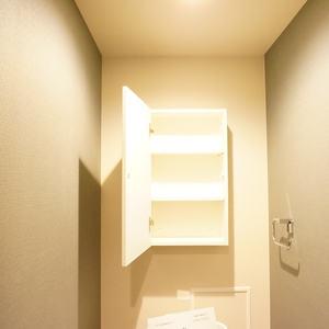 東急ドエルアルス石川台B棟(4階,)のトイレ