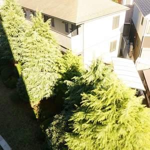 東急ドエルアルス石川台B棟(4階,2790万円)のお部屋からの眺望