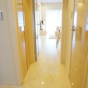 トキワパレス(9階,)のお部屋の廊下
