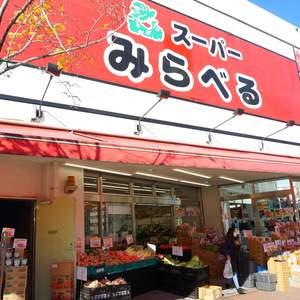 上落合ハイツの周辺の食品スーパー、コンビニなどのお買い物
