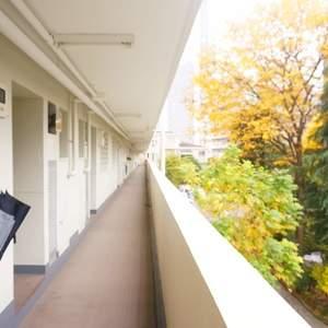 グリーンヒル新宿(4階,)のフロア廊下(エレベーター降りてからお部屋まで)