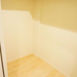 グリーンヒル新宿(4階,)の洋室