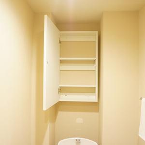 グリーンヒル新宿(4階,)のトイレ