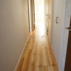コスモ板橋本町シティフォルム(13階,)のお部屋の廊下