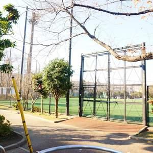 パークハイツ板橋志村の近くの公園・緑地