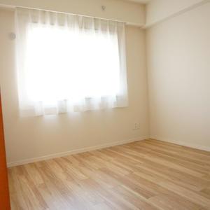 パークハイツ板橋志村(2階,)の洋室
