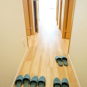 パークハイツ板橋志村(2階,)のお部屋の廊下