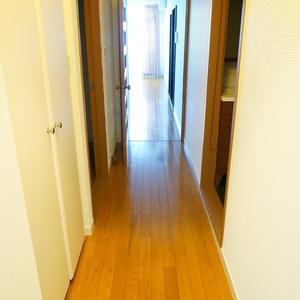 エル・アルカサル中野(2階,)のお部屋の廊下