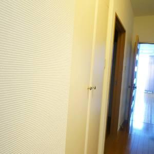 エル・アルカサル中野(2階,)のお部屋の玄関