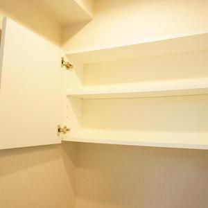 スカイコート神楽坂参番館(3階,4590万円)のトイレ