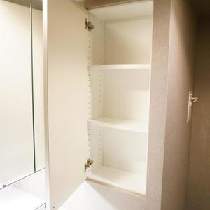 パークハウス中野アーバンス(1階,4780万円)の化粧室・脱衣所・洗面室
