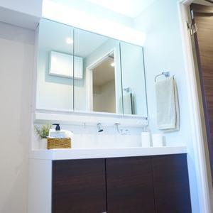 グランヴェルジェ蓮根(4階,)の化粧室・脱衣所・洗面室