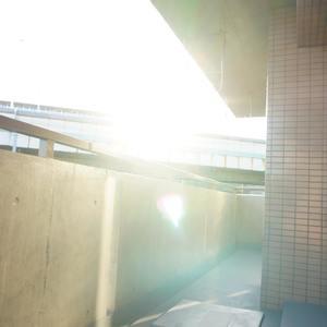 グランヴェルジェ蓮根(4階,)のバルコニー