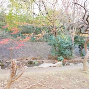 パシフィック小豆沢の近くの公園・緑地